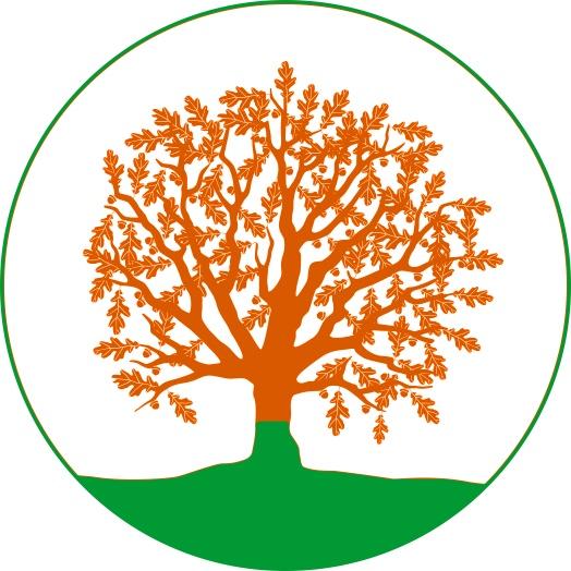 Дрэва сонца лого