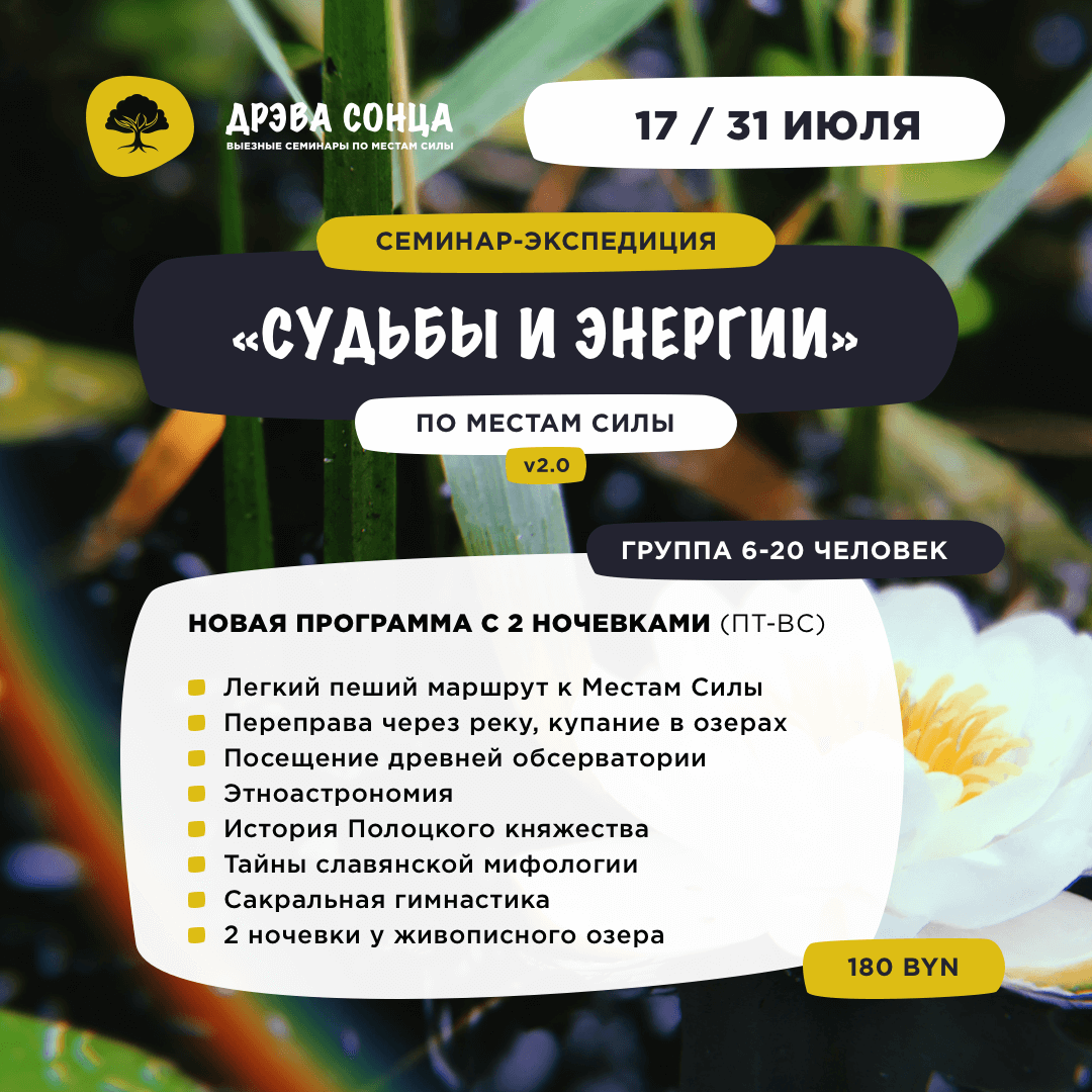 drevasonca_mestosily